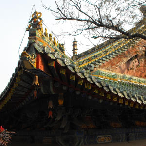 Shaolin Temple Rooftop